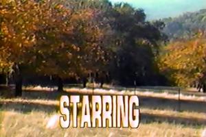 satin cuties (1987) full vintage movie scene